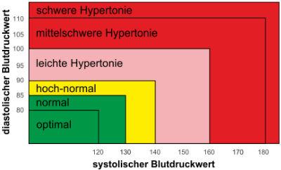 Bluthochdruck Diagramm nach WHO